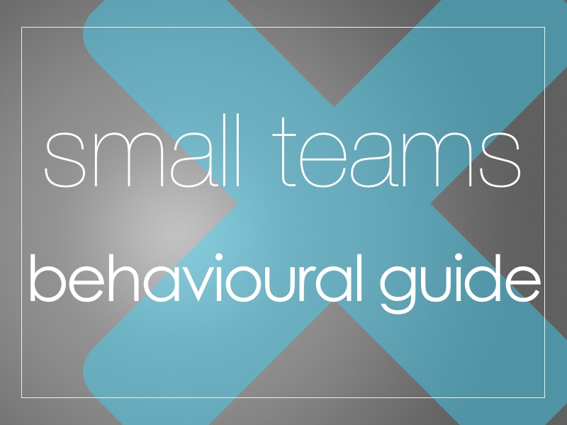 SmallTeams